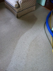 Carpet Cleaning Bristow VA