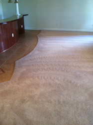 Carpet Cleaning Ashburn VA