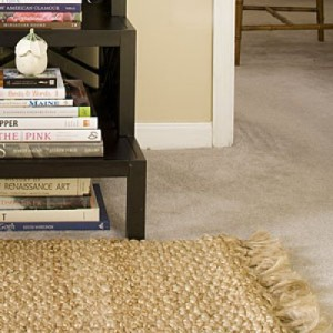 Ashburn Carpet Cleaning
